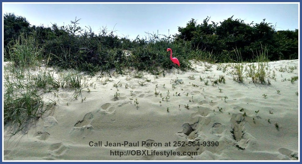 You don't have to worry about flooding in the area and spending more for expensive flood insurance since this Swan Beach Outer Banks NC lot for sale is in an X-flood zone.