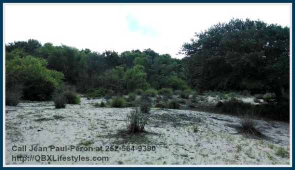 Check out this lot for sale on OBX NC that offers amazing panoramic views of the forest and the ocean!