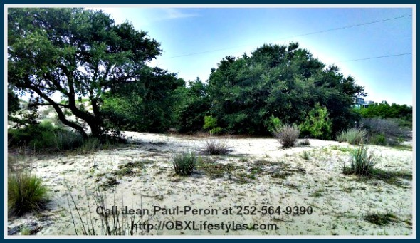 This Carova Outer Banks NC lot for sale is a huge lot that's also ideal for beach lovers and nature lovers too.