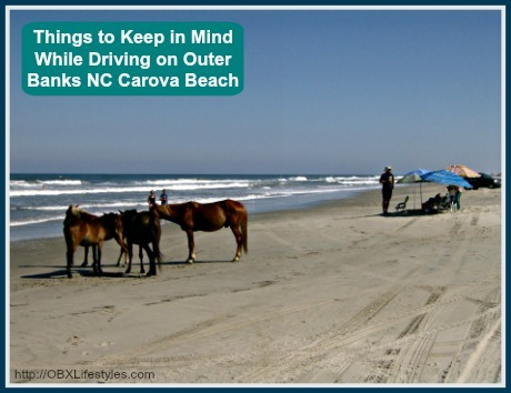 Here are the important things that you need to remember when driving in Carova Beach on the Outer Banks NC.