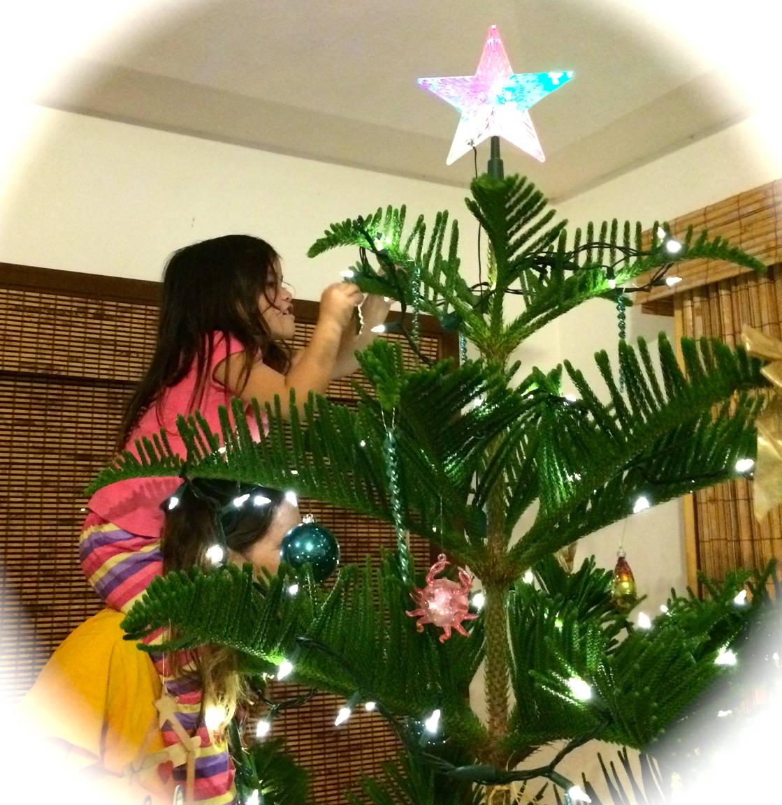 Our Kauai Christmas Tree 2015