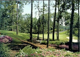 Country Club of the South Golf Course