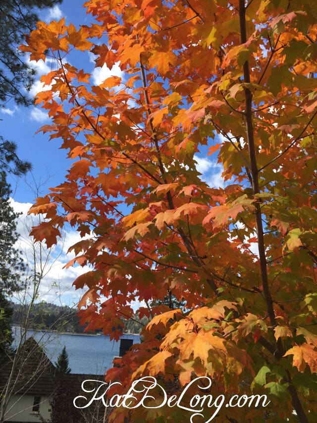 Fall In love With Selling Your Home In Lake Arrowhead