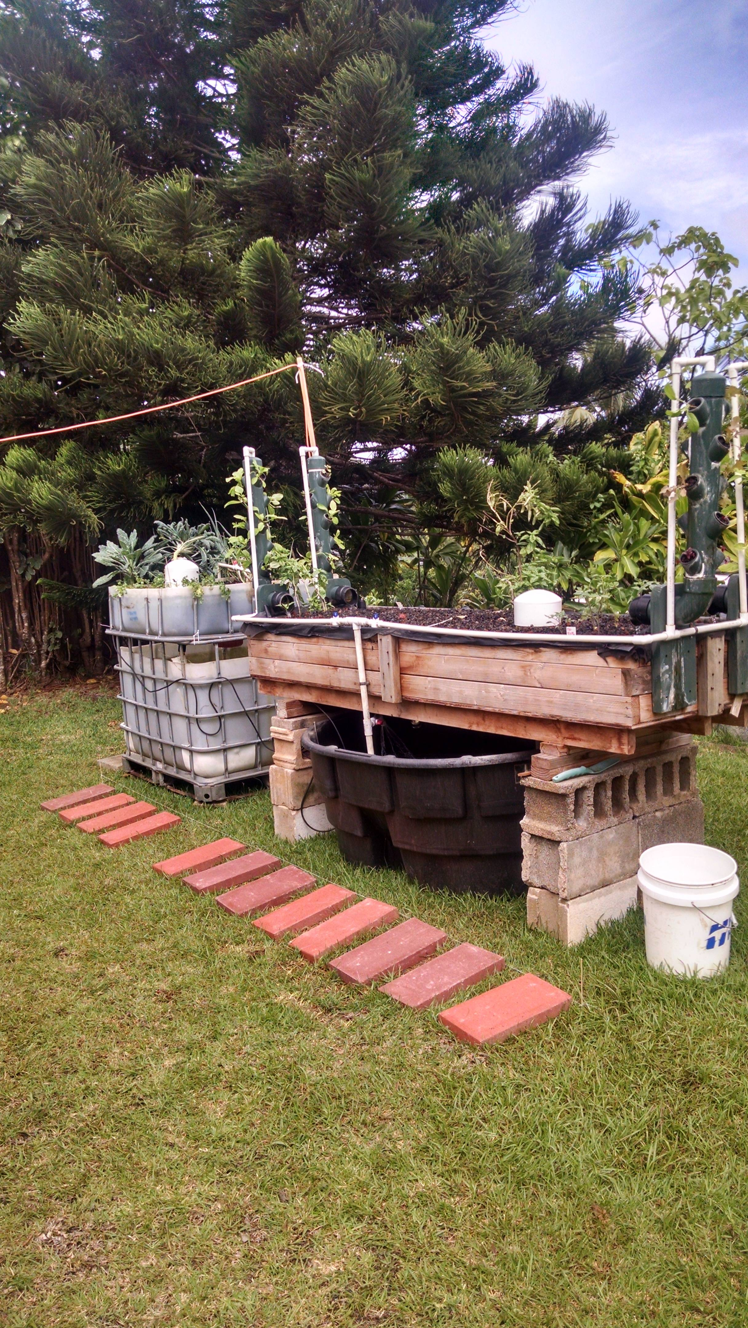 Hawaii Aquaponics system