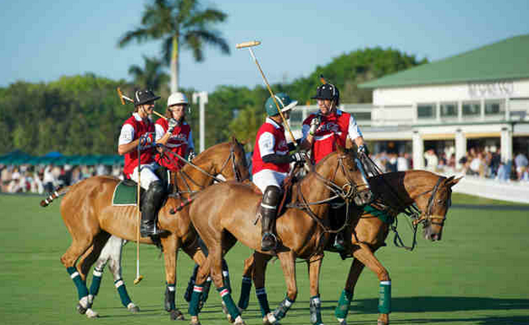 Image result for palm beach polo club