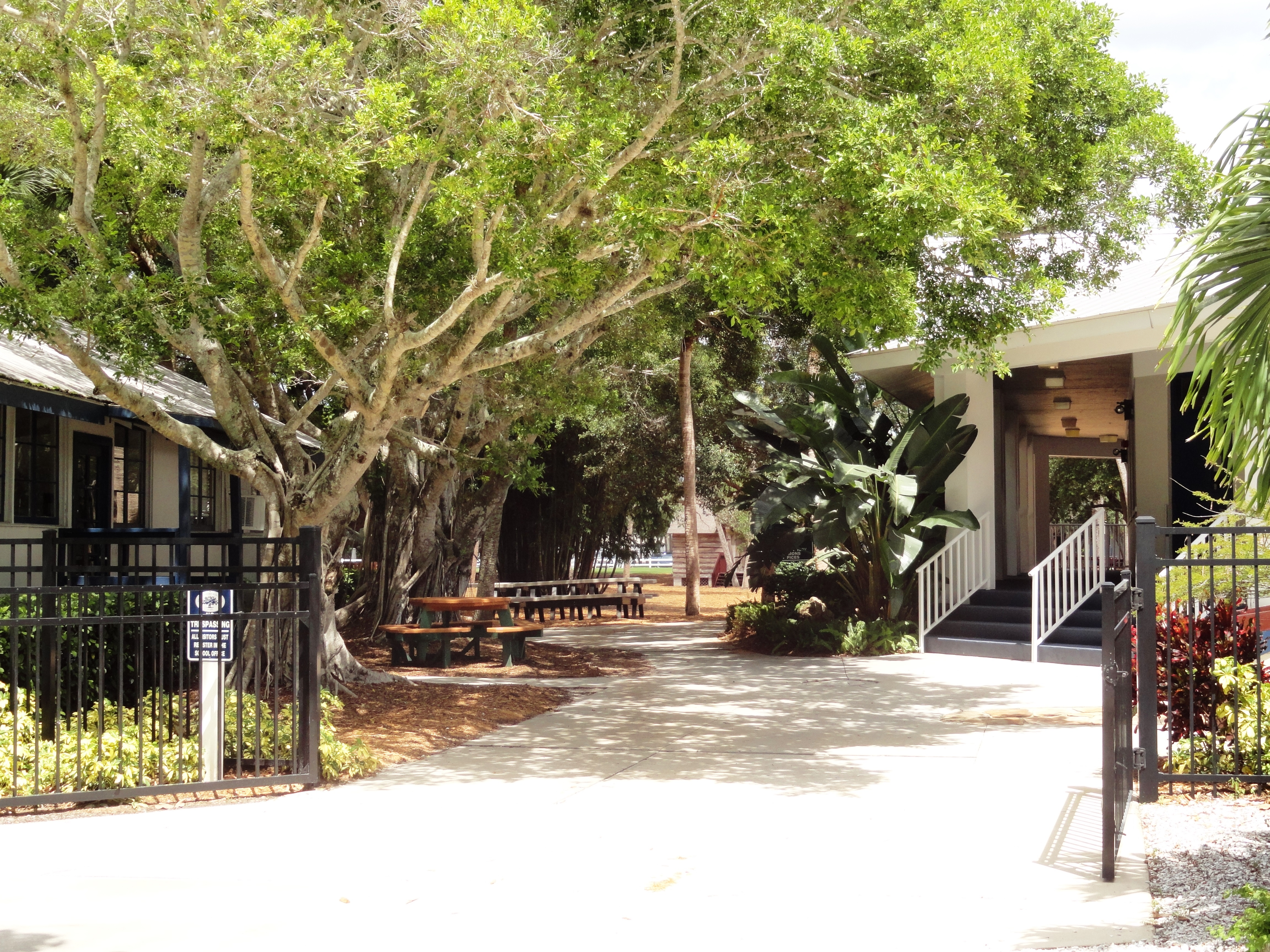 A Private School In Sarasota Look Into The Out of Door Academy