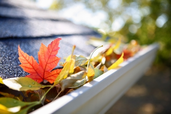 Fall home preparation tips for Fall home preparation