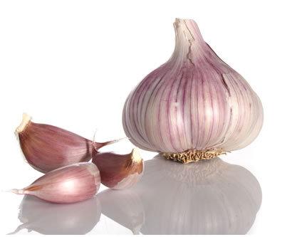 52 Clove Garlic Soup Recipe