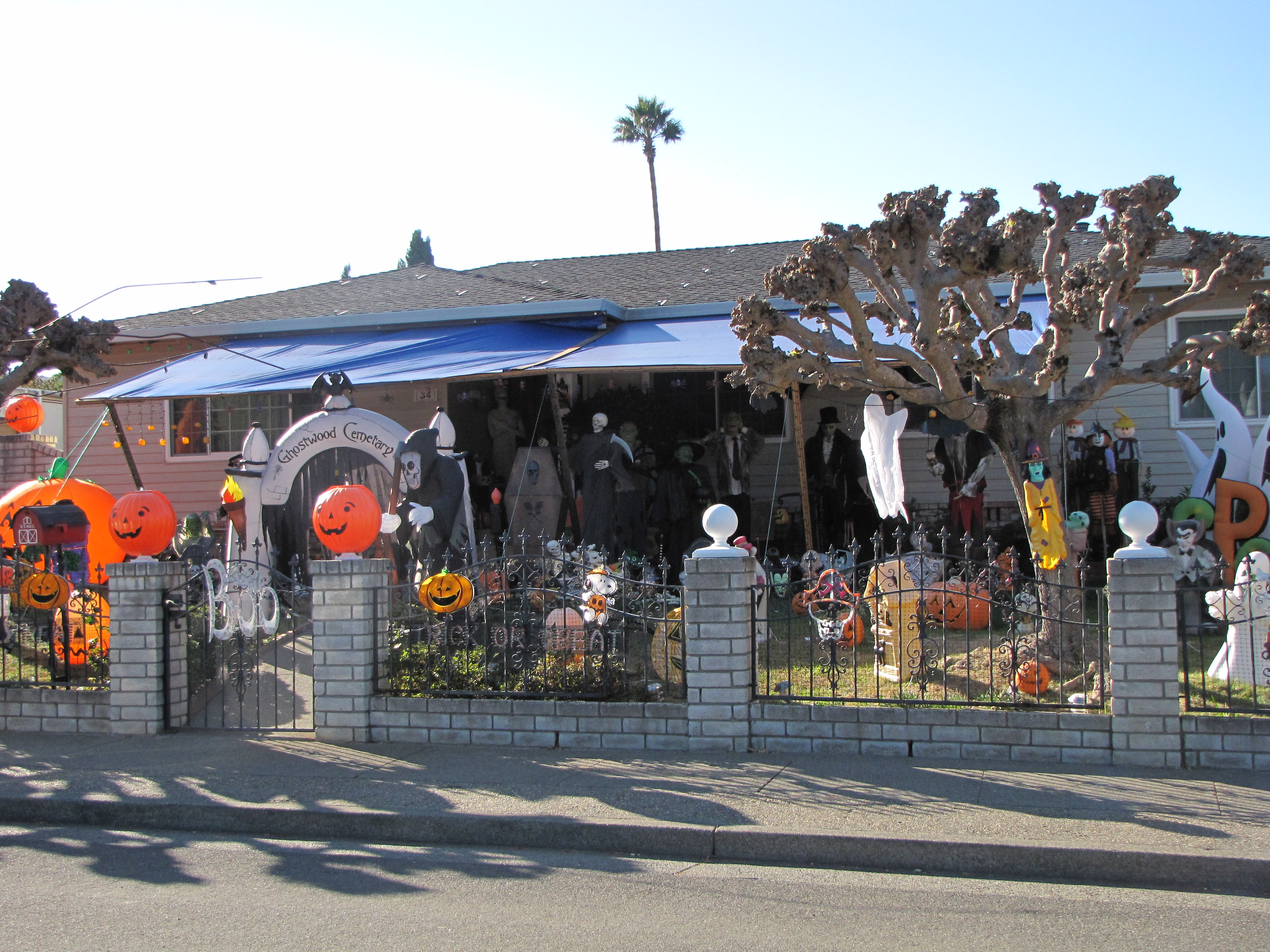 best decorated halloween houses in novato