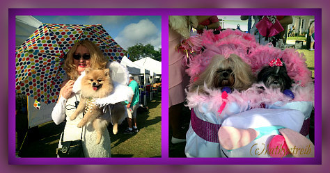 delray beach easter bonnet pet parade