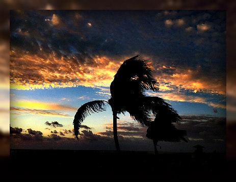 Michael A Jacobs Pa Palm Beach Gardens Fl