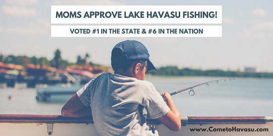 Lake Havasu fishing ranked #1 in Arizona and #6 across the US for the top mom-approved fishing and boating locations according to TakeMeFishing.org.