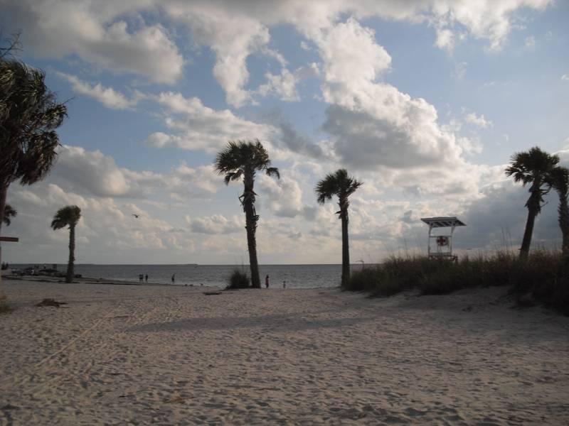 Green Dolphin Tarpon Springs Florida Real Estate Sales