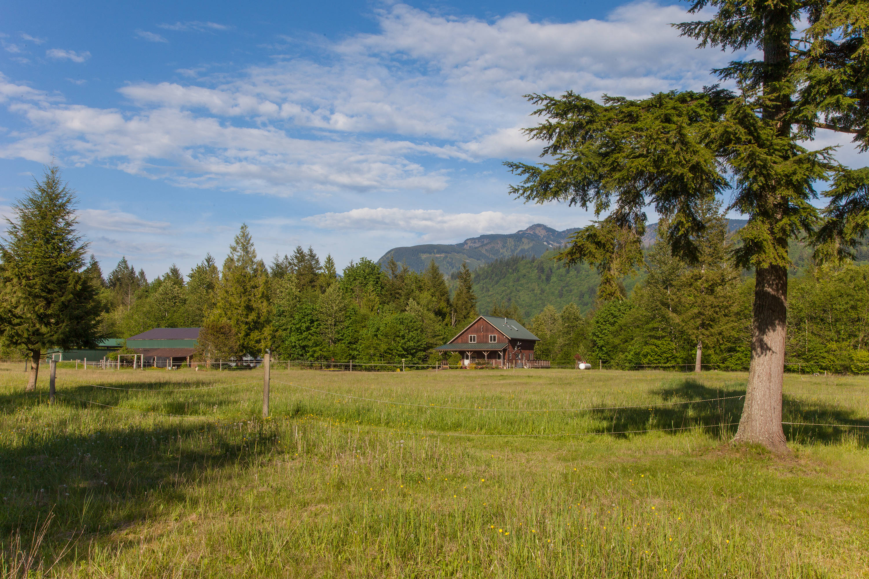 Price Reduced On Sunny Mountainview Horse Farm