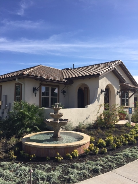 homes for sale at kissing tree in san marcos tx