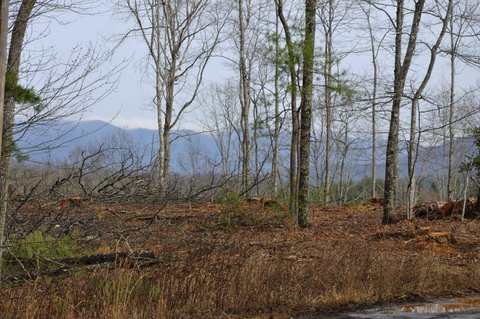 unrestricted land in murphy nc