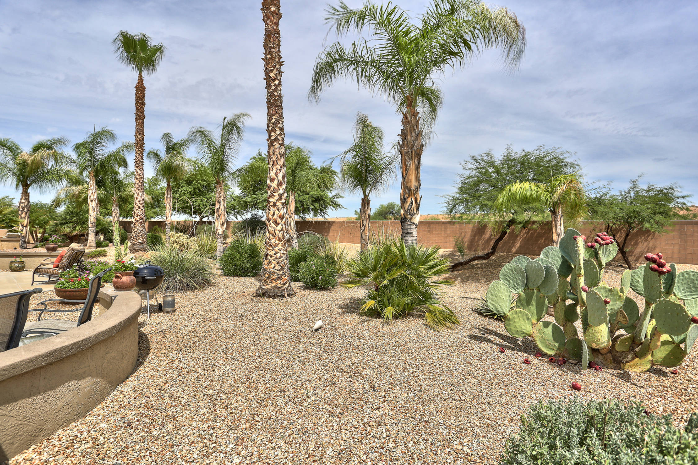 18838 N Cactus Flower Way, Surprise Arizona