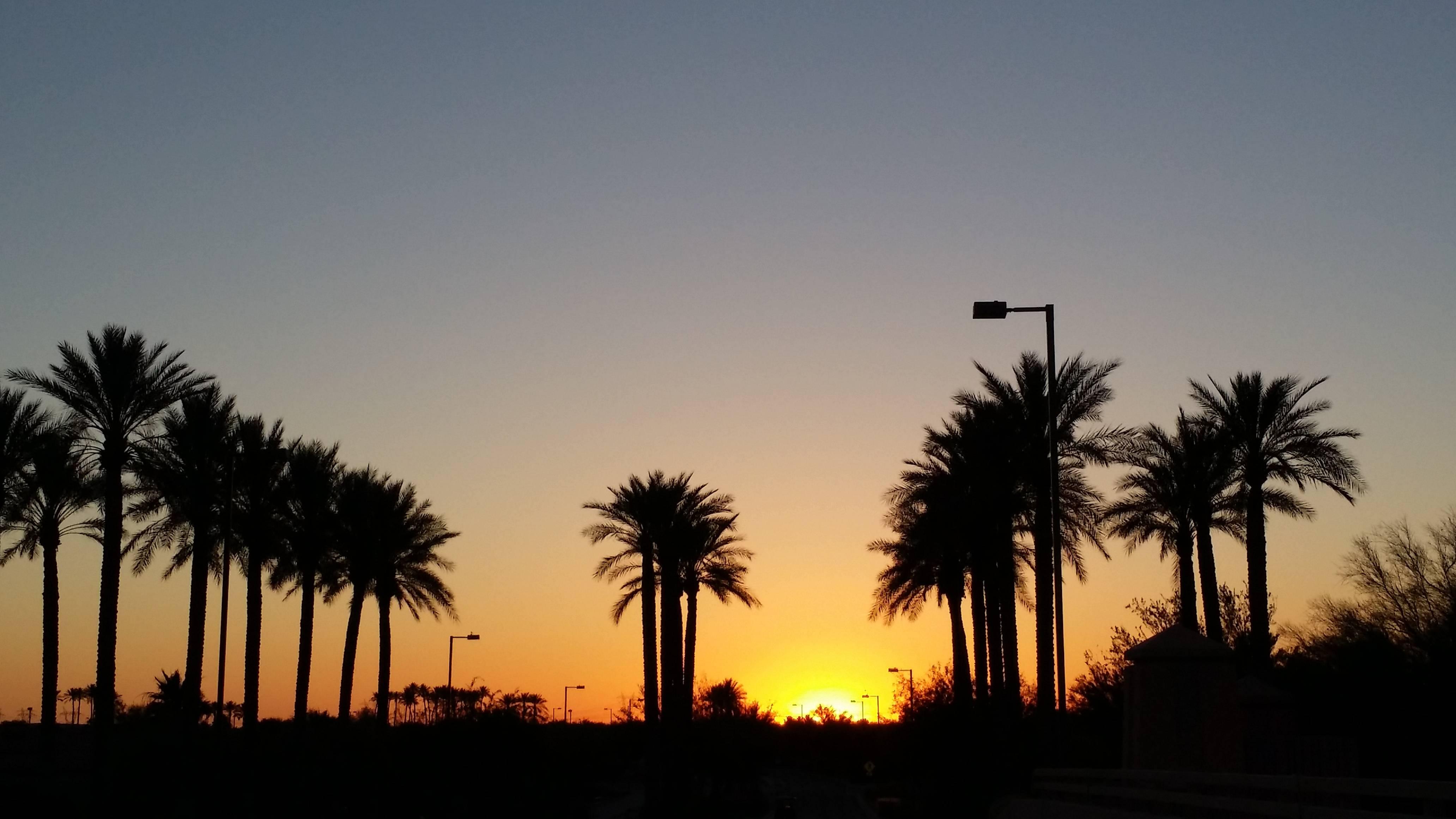 Sun City Grand Sunset