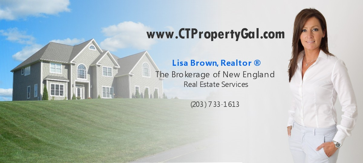 Danbury Ct House For Sale The Brokerage Group