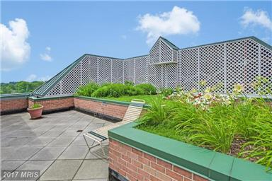 Roof Deck at the Christopher at 4808 Moorland Lane Bethesda MD