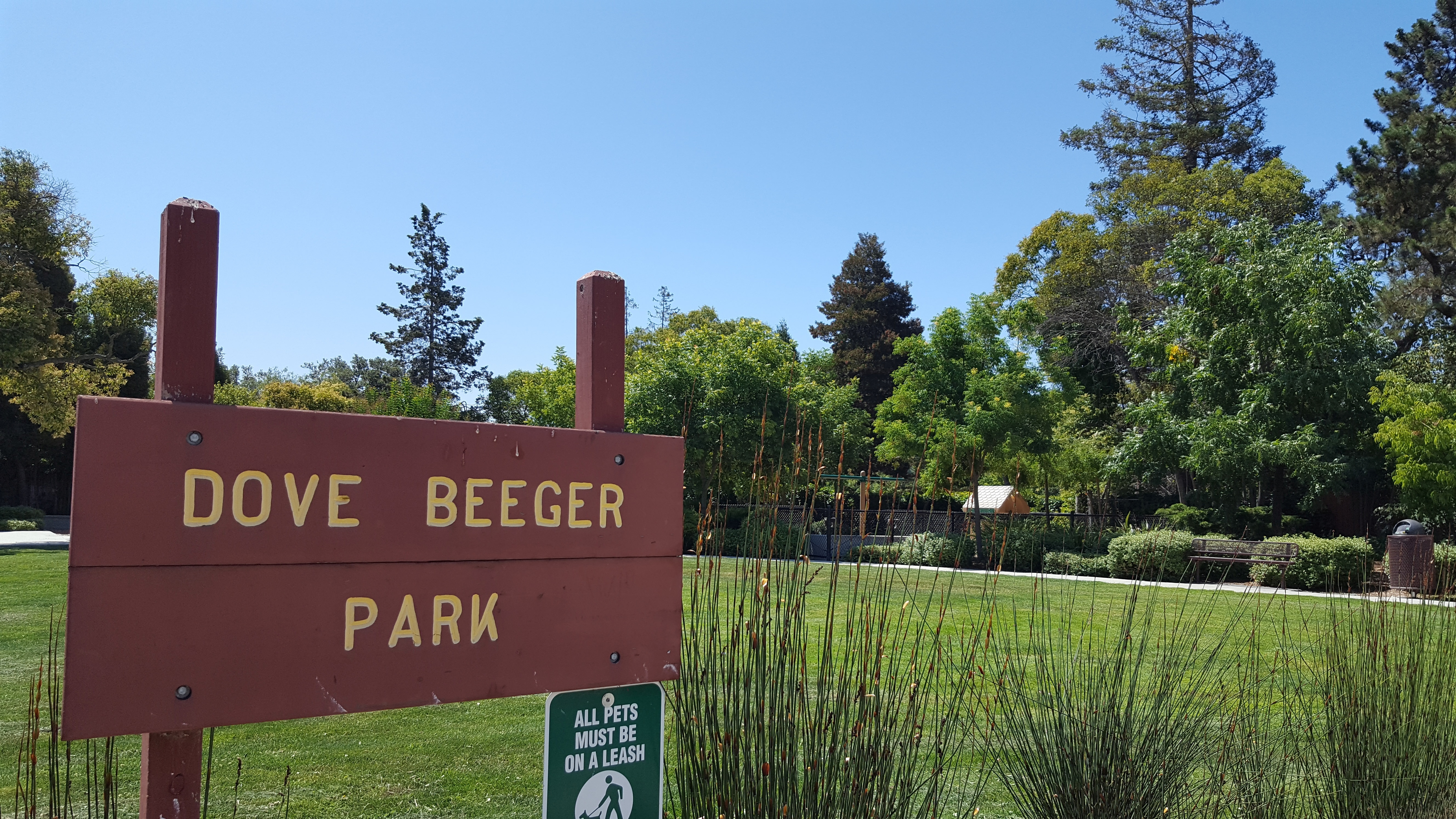 Dove Beeger Park, Redwood City
