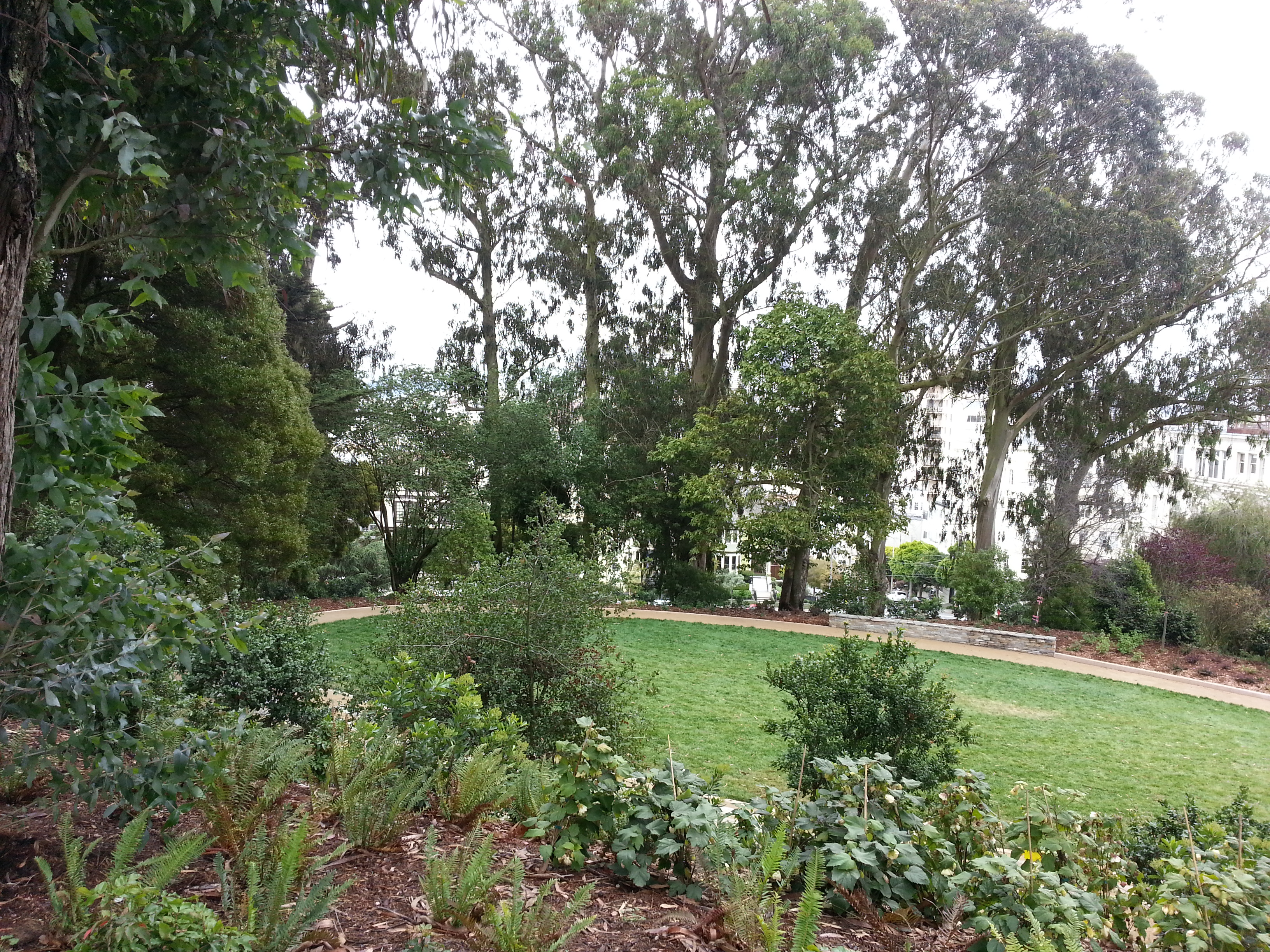 Pacific Heights park