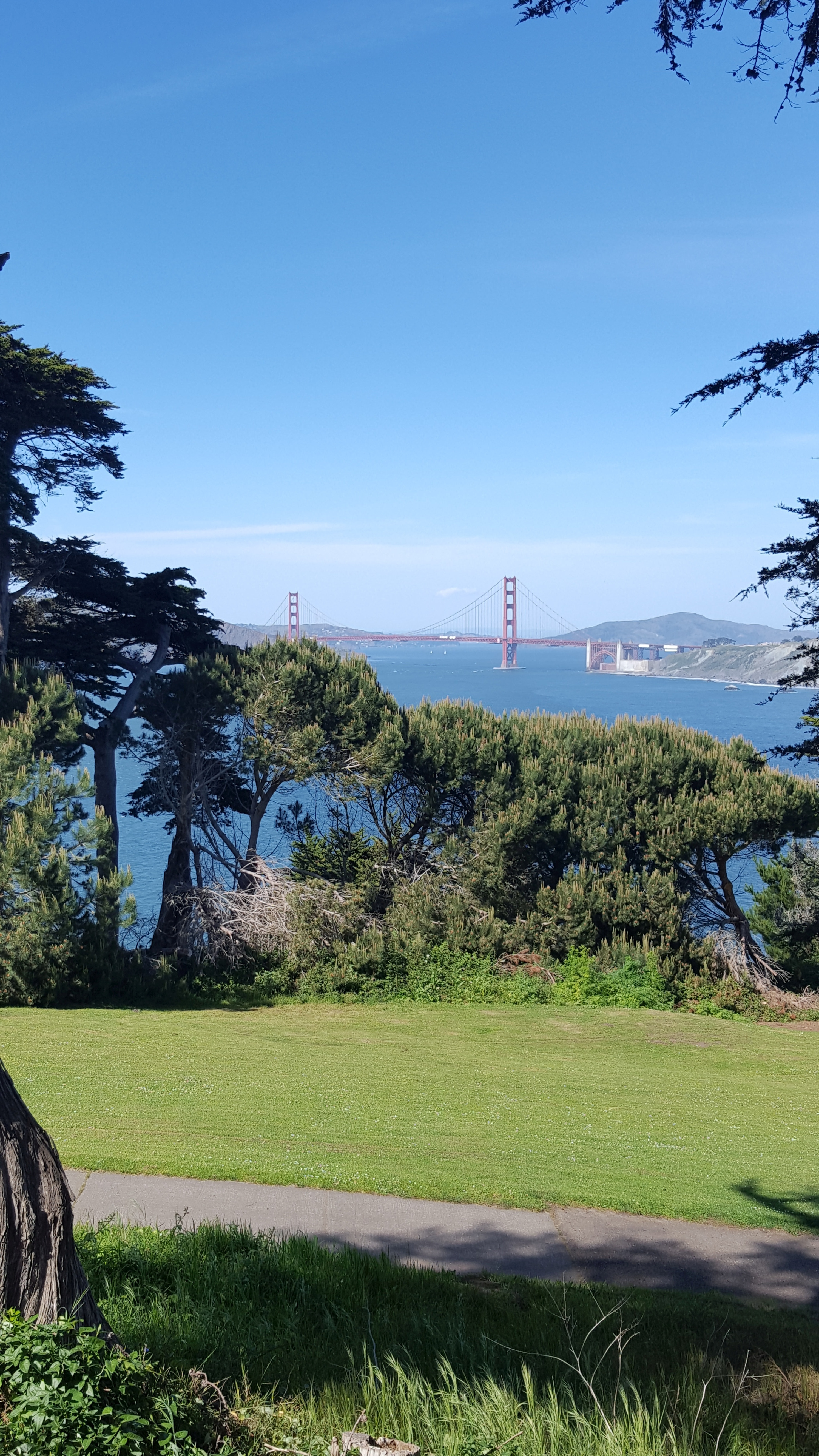 view from 17th hole, Lincoln Park Golf, SF