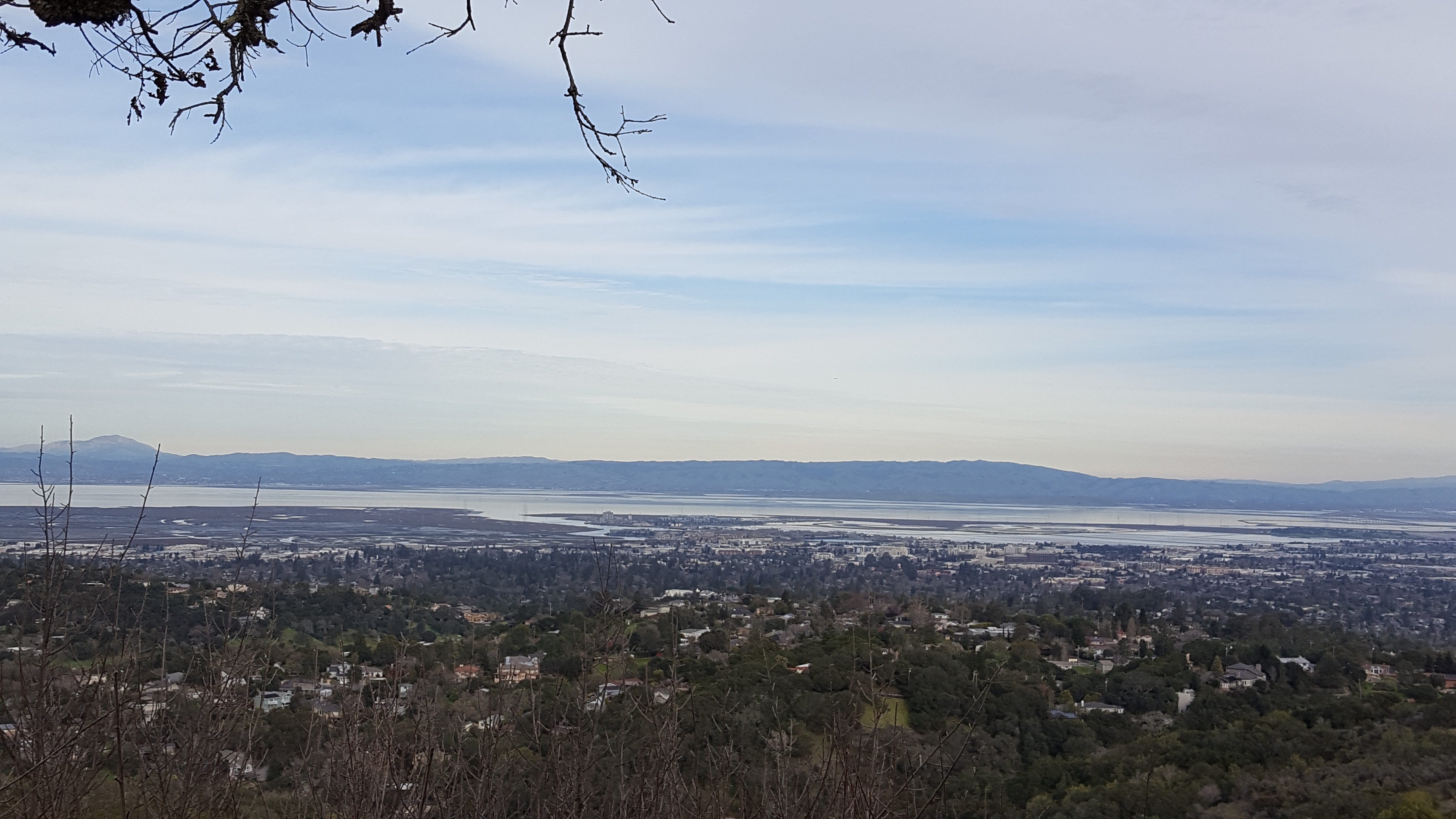 Redwood City from Edgewood County Park