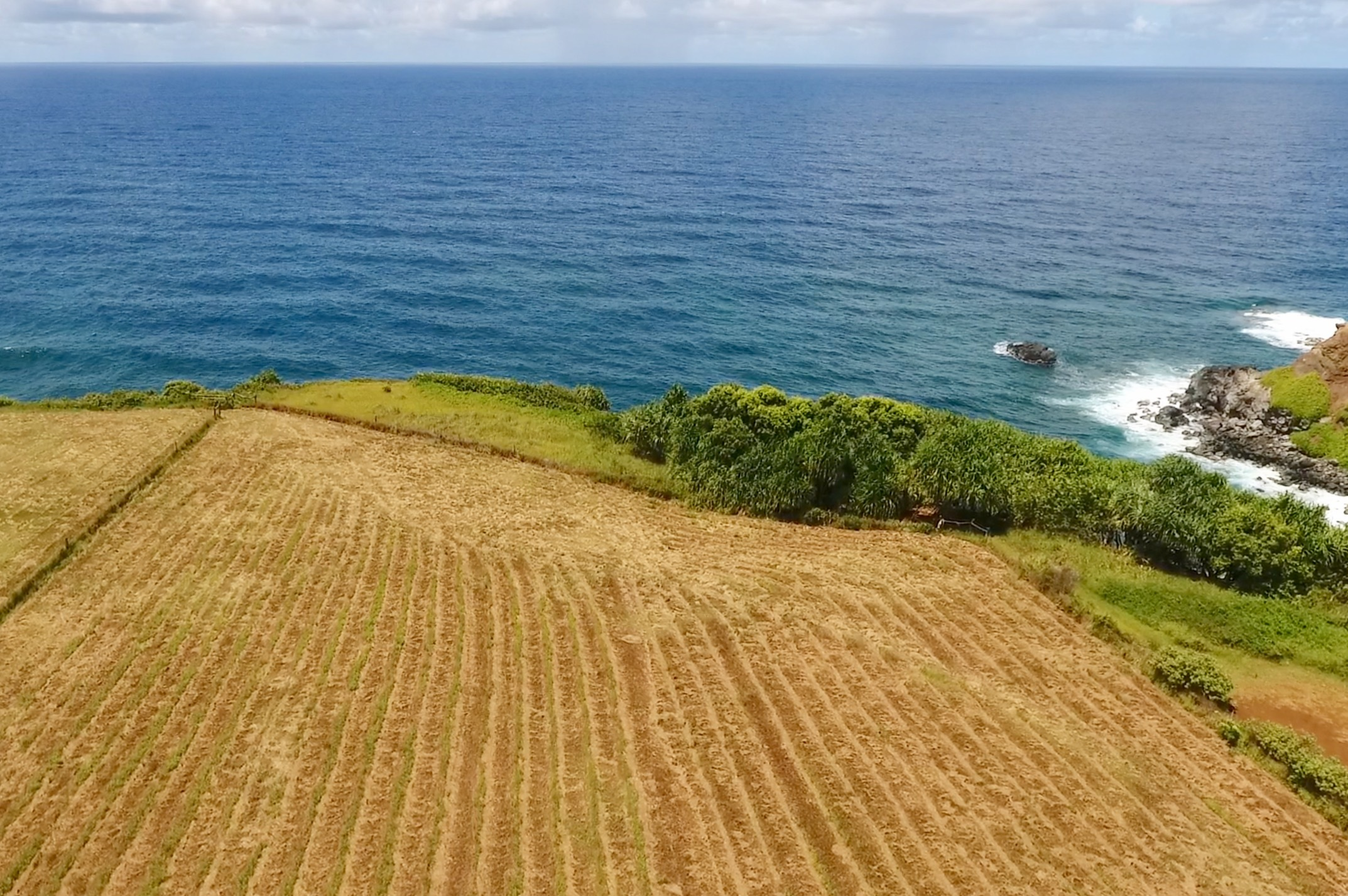 460 Hoolawa Rd - 2 oceanfront acres