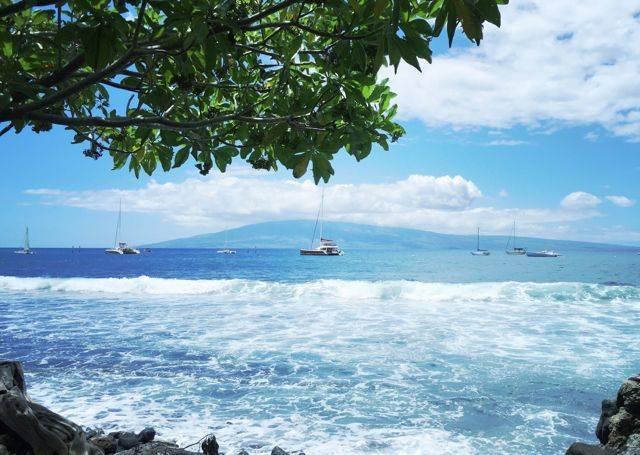 summer time in Lahaina Maui Hawaii