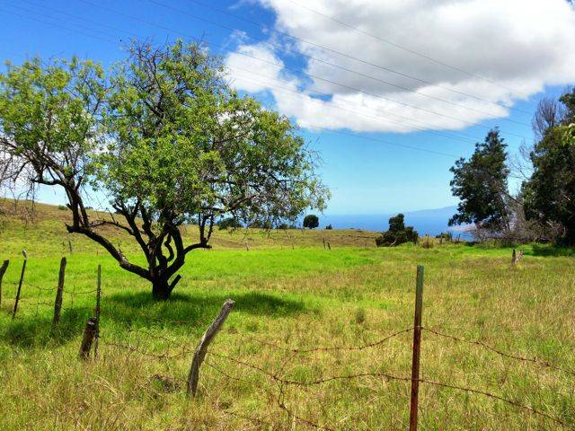 beautiful views in upcountry Maui, land for sale