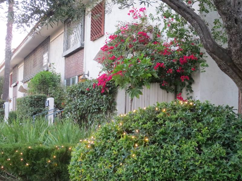 California Villas Condos Near Caltech in Pasadena