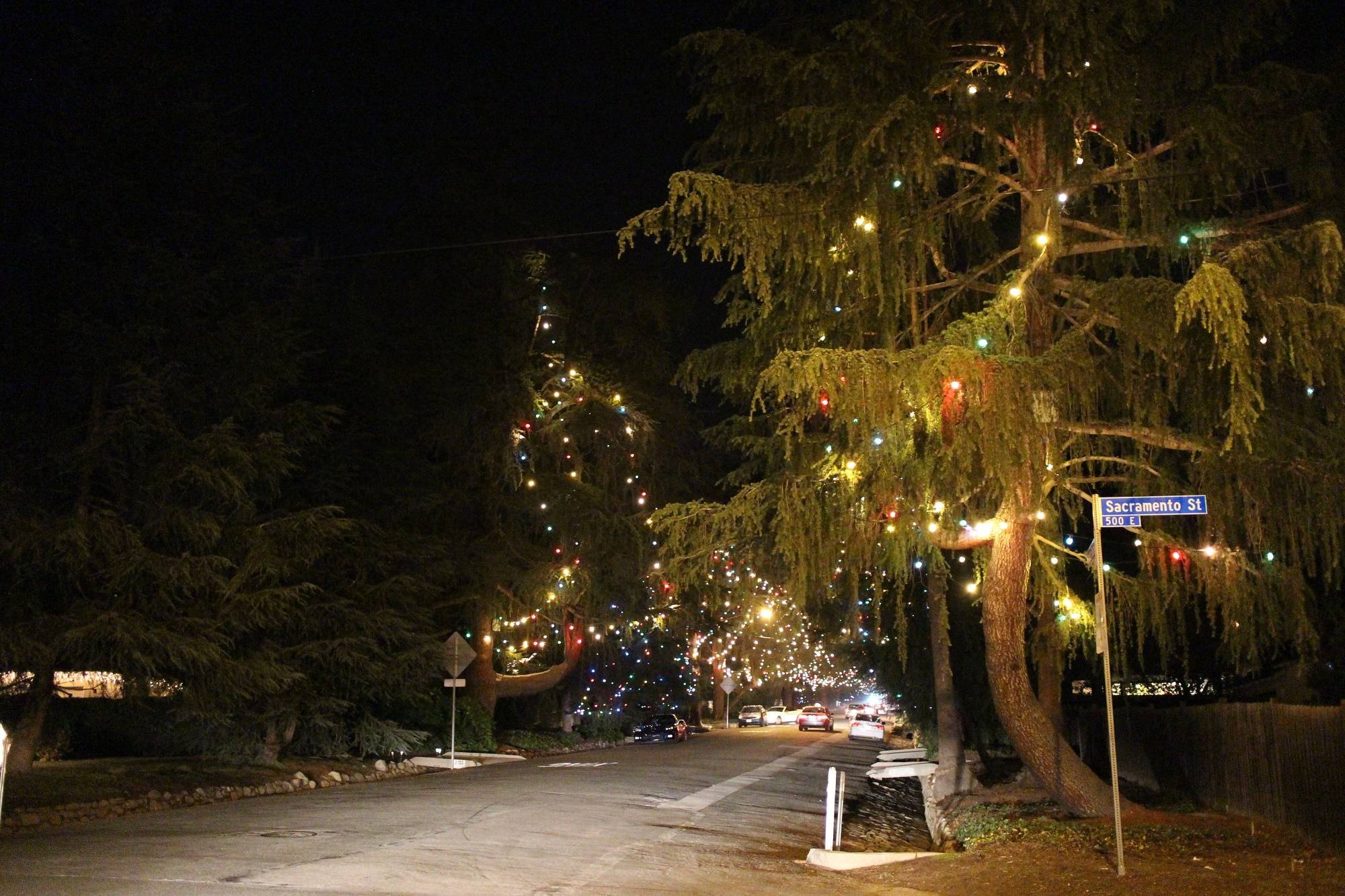 christmas lights in altadena christmas tree lane