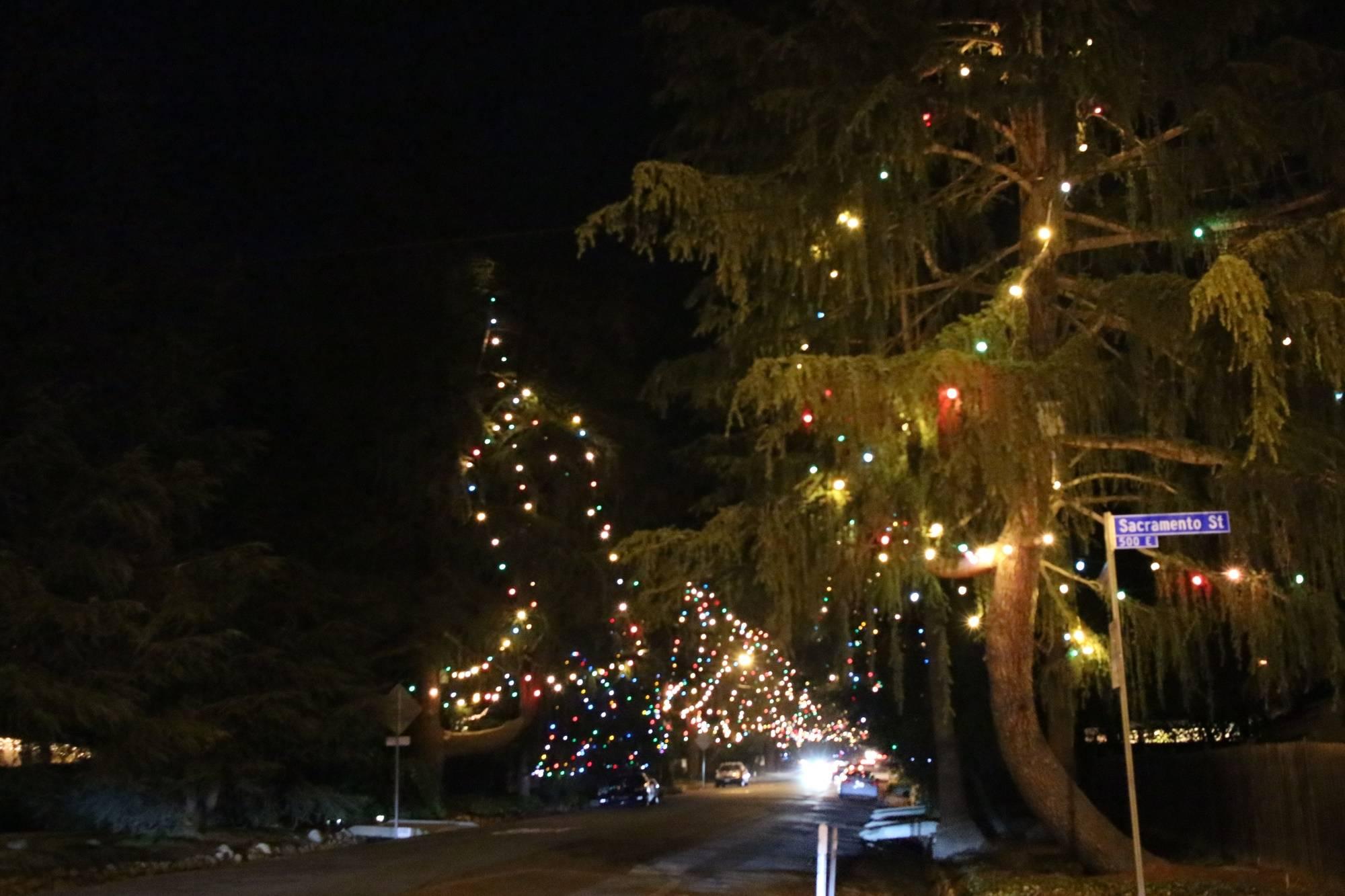 christmas tree lane altadena santa rosa avenue