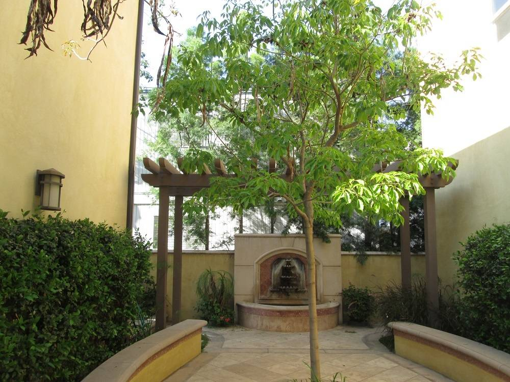 Pasadena CA Mediterranean Townhomes at 480 S Los Robles