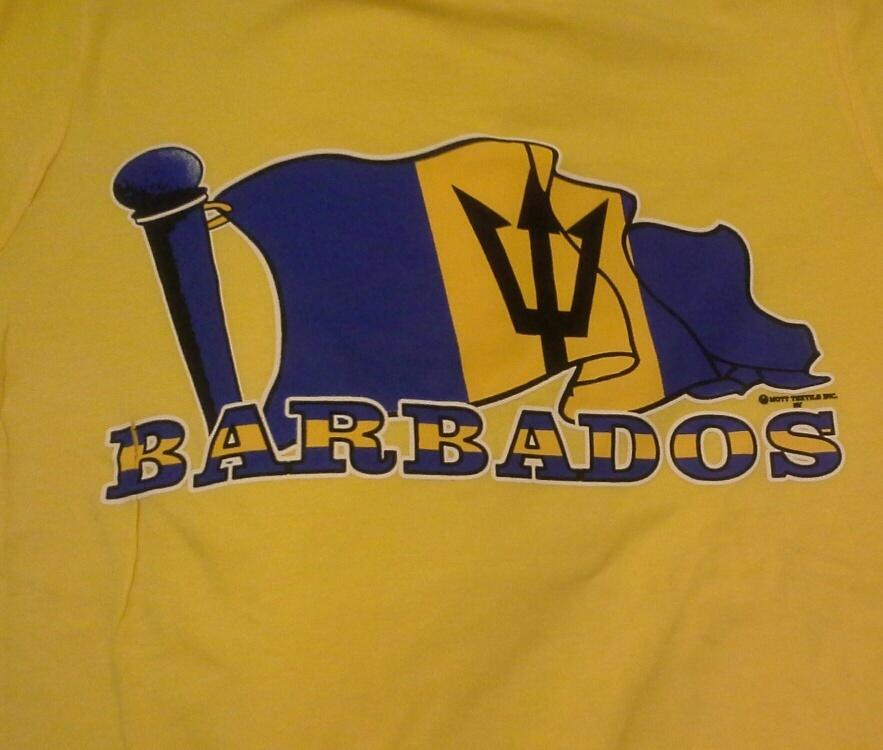barbados day in brooklyn