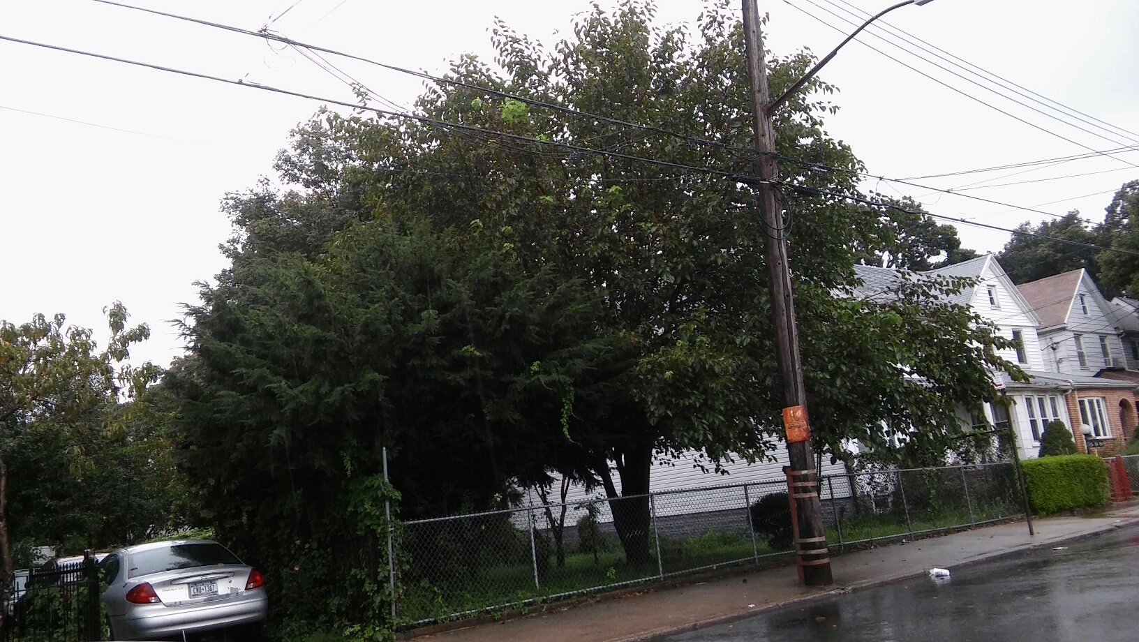 land for sale in flabush brooklyn