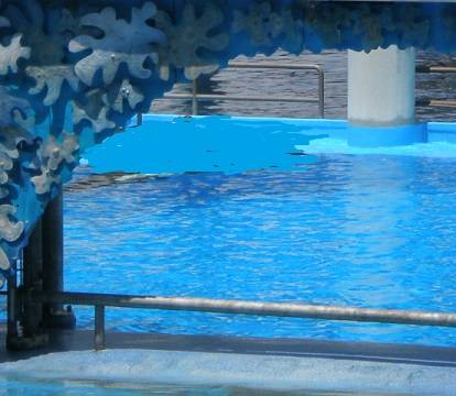 coney island aquarium