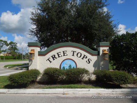 Tree Tops Wellington Florida Homes For Sale