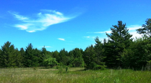 Door County Hunting land for sale