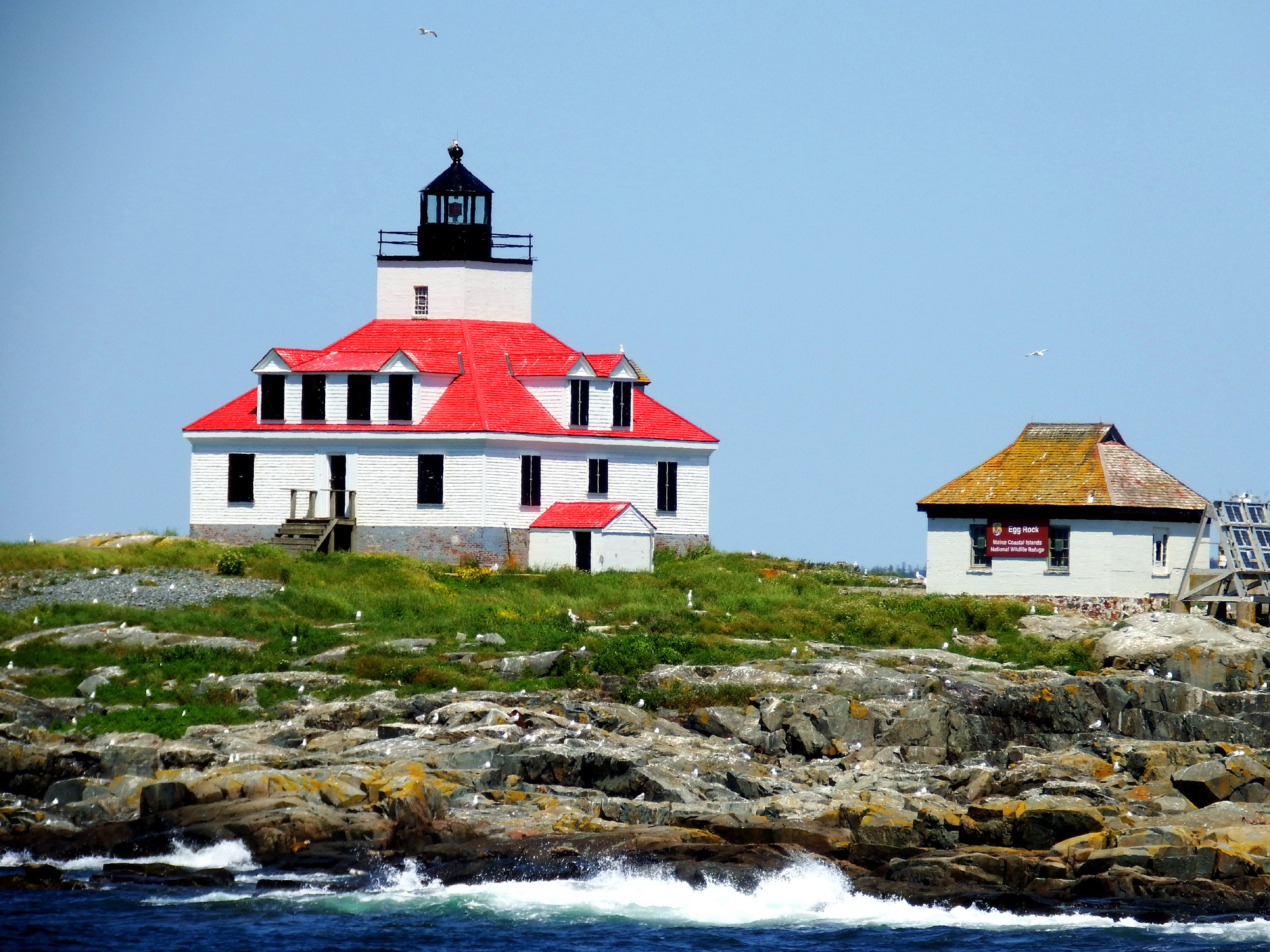maine lighthouses off bar harbor photo