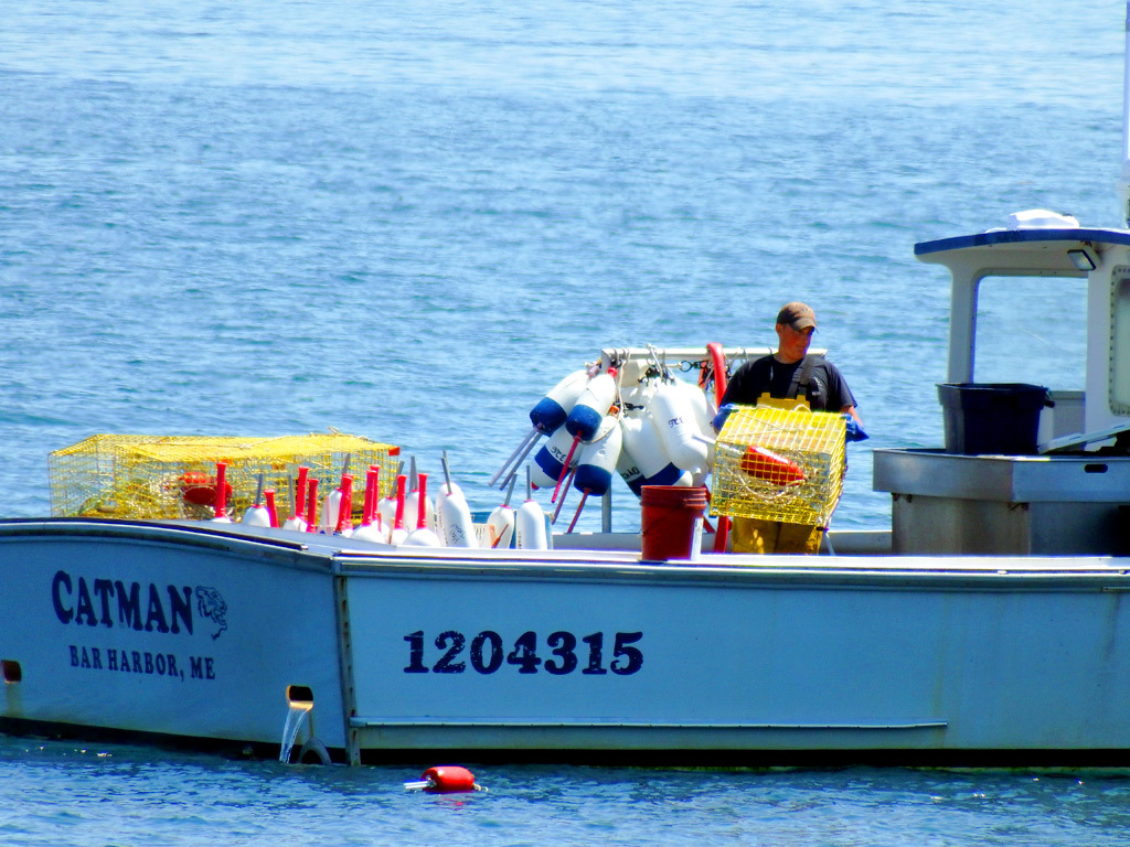 fishing in maine lobster boat photo