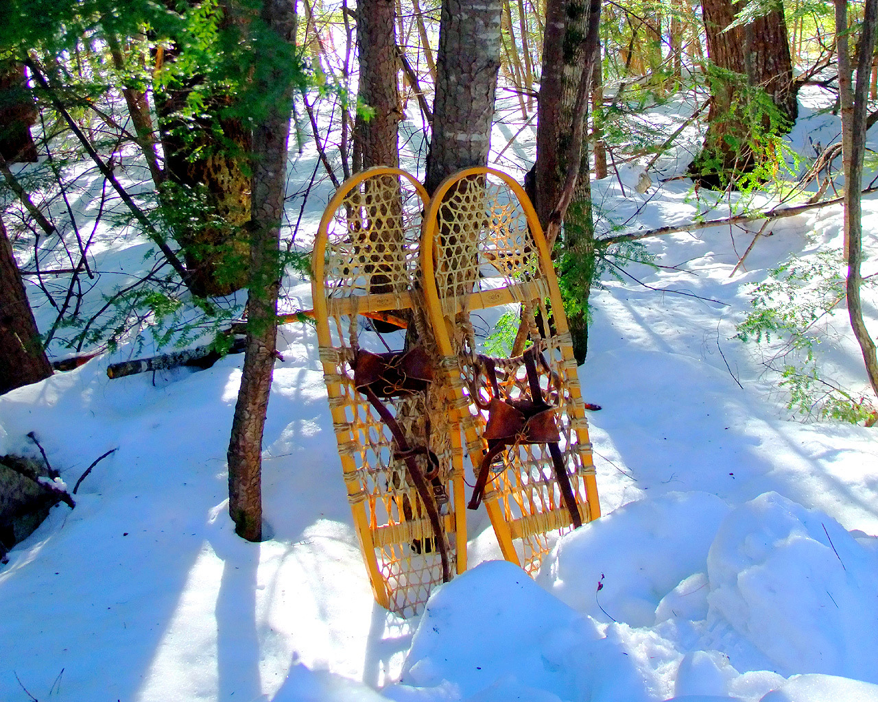 maine snow shoeing winter photo