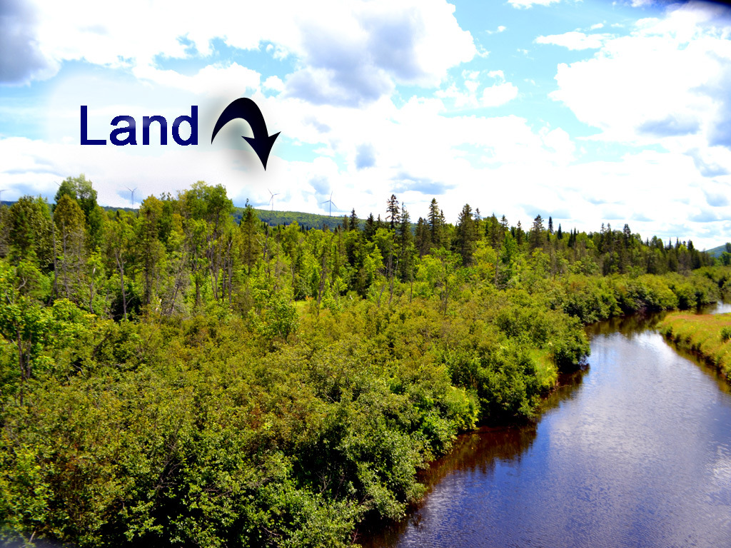 Land on the water in maine how about 122 acres on riv for Free land maine