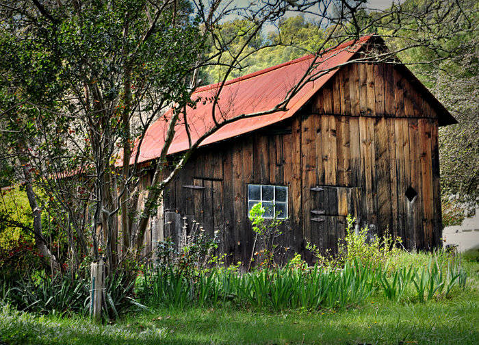 Coloma Barn in California Gold Country