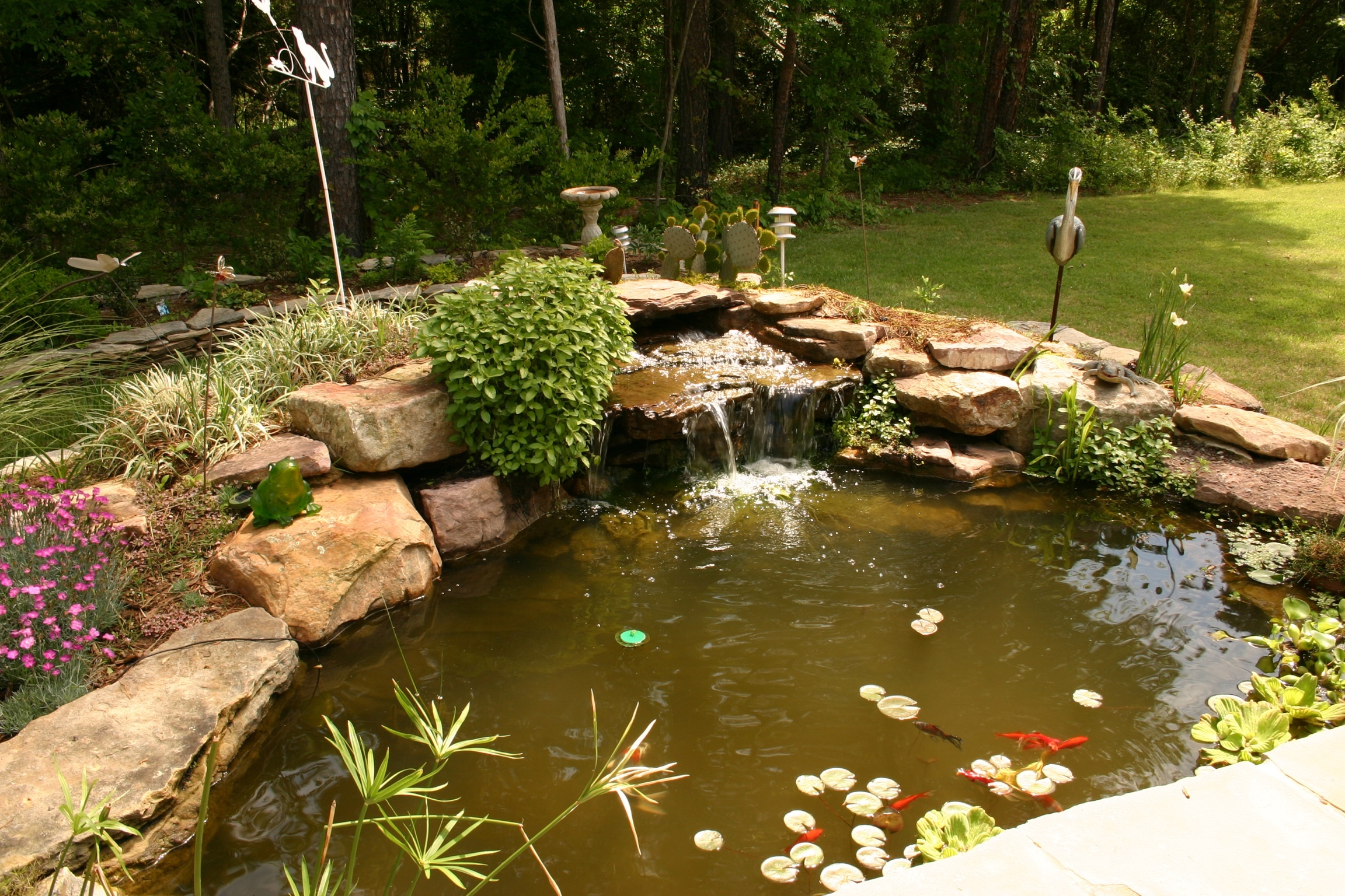 17311 meadow bottom rd in ballantyne new price for Koi pond price