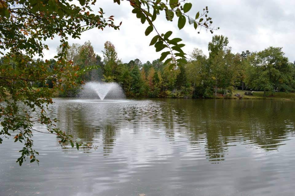 Candlewyck Pond in Charlotte, NC