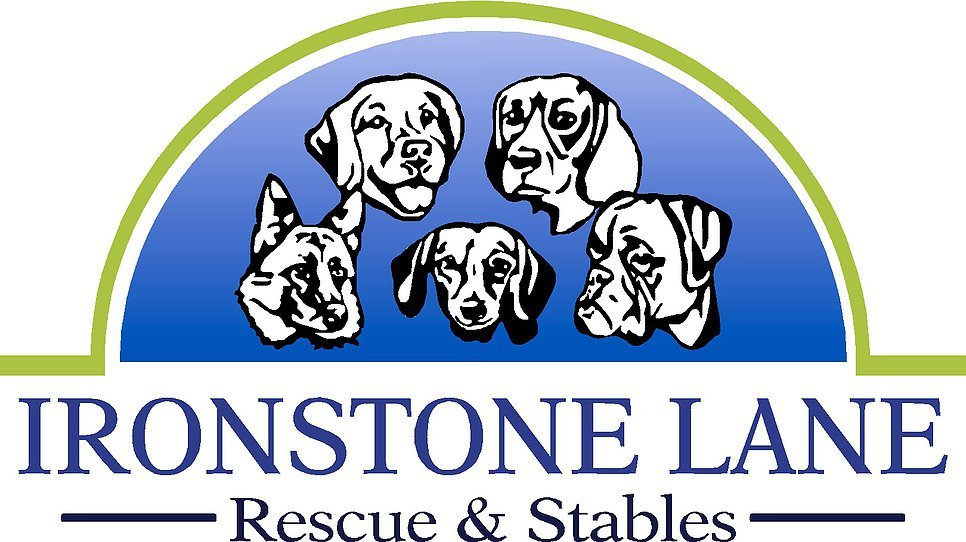Ironstone Rescue & Stables In Charlotte Metro Area