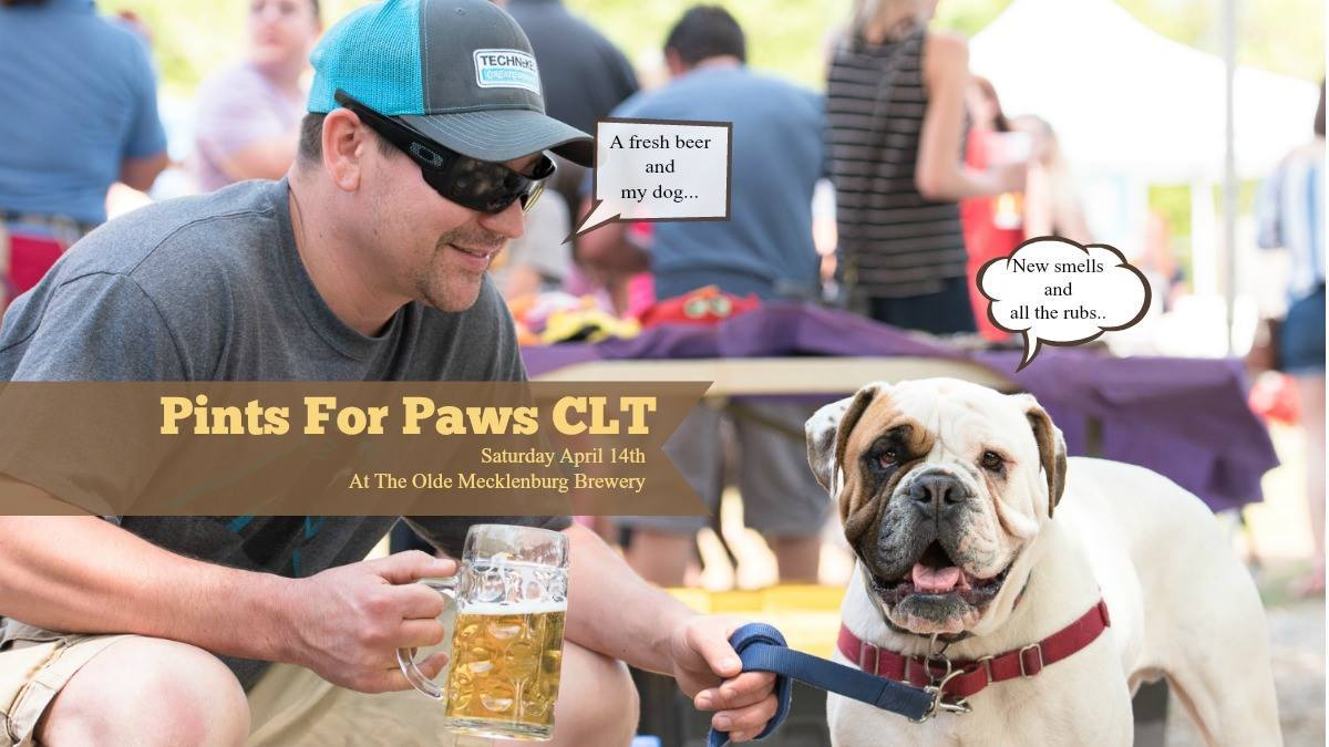 Pints for Paws CLT Fund Raiser In Charlotte