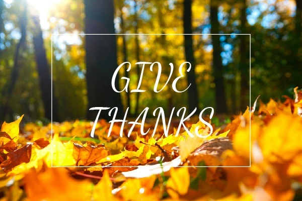 Happy Thanksgiving from Nina Hollander/Carolinas Realty Partners In Charlotte, NC